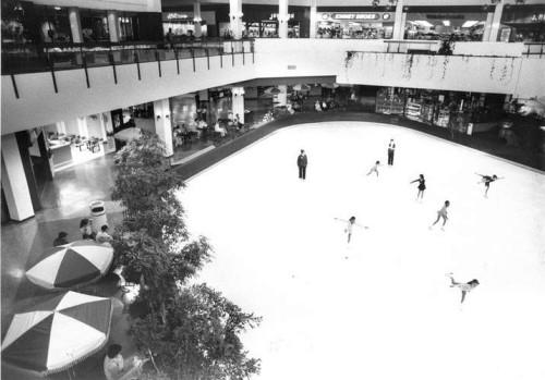 centre skate