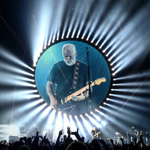 gilmour msg