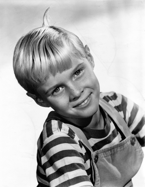jay north dennis menace