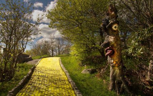 tree face oz